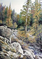 Mountain Rapids Fine Art Print