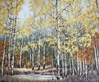 New Aspen Grove Fine Art Print