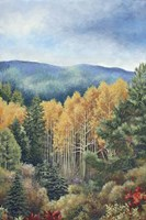 The Colors of Fall Fine Art Print