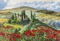 Val d'Orcia Fine Art Print