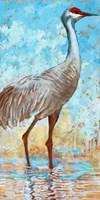 Sandhill Cranes II Fine Art Print