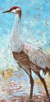 Sandhill Cranes IV Fine Art Print