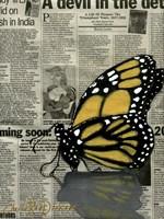 Butterfly On My Newspaper Fine Art Print