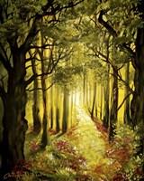 Sunlit Forest Path Fine Art Print