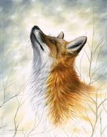 Winter's warmth Fine Art Print
