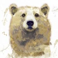 Golden Forest - Bear Fine Art Print