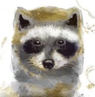 Golden Forest - Raccoon Fine Art Print