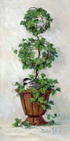 Ivy Topiary II Fine Art Print