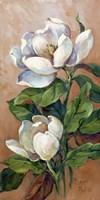 Magnolia Accents I Fine Art Print