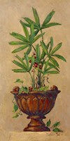 Tropical Blend I Fine Art Print