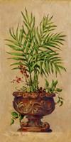 Tropical Blend II Fine Art Print
