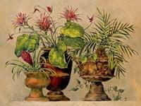 A Taste of the Tropics Fine Art Print