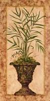 Regal Palm Fine Art Print