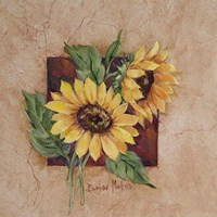 Sunflower Square Fine Art Print