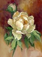 White Peonies I Fine Art Print