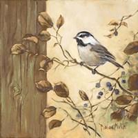 Chickadee Square II Fine Art Print