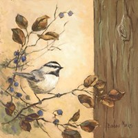 Chickadee Square I Fine Art Print
