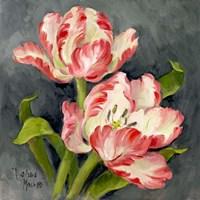 Pink Tulips Fine Art Print