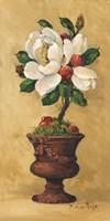 Magnolia Topiary II Fine Art Print