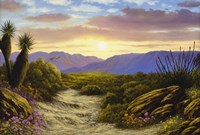 Desert Splendour Fine Art Print