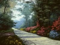 Garden Path Fine Art Print