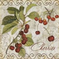 Pastoral Fruits I Fine Art Print