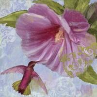 Humming Hibiscus I Fine Art Print