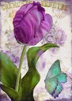 Parrot Tulips II Fine Art Print