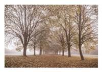 Autumn's Peace Fine Art Print