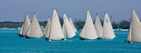 Annual National Family Island Regatta, Georgetown, Bahamas Fine Art Print