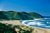 View of the Coastline, Eastern Cape, South Africa Fine Art Print