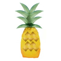 Tropical Icons Pineapple Fine Art Print