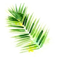 Tropical Icons Palm Frond Fine Art Print