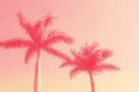 Palm Trees in Pink Fine Art Print