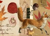 Autumn Fox Fine Art Print