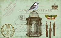 Carte De Visit Bird Fine Art Print