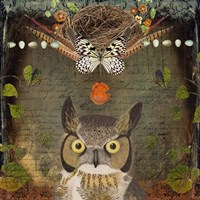 Deep Forest Owl Fine Art Print