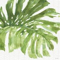 Mixed Greens LXXIV Fine Art Print