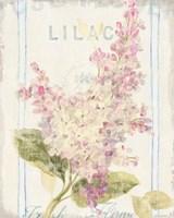 Floursack Florals V Fine Art Print