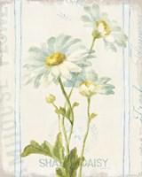 Floursack Florals III Framed Print