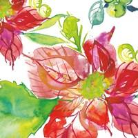 Poinsettia Pretty III Fine Art Print