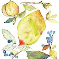 Harvest Rush I Fine Art Print