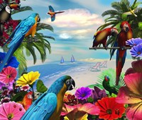 Macaw Island Framed Print