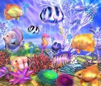 Ocean's Little Wonders Fine Art Print