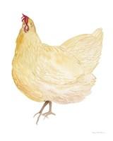 Life on the Farm Chicken Element II Fine Art Print