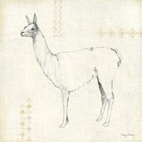 Llama Land VIII Fine Art Print