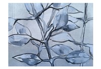 Grey Branches Fine Art Print