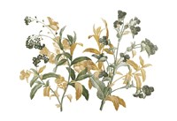 Floral Bushel Green Golds Fine Art Print