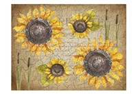 Sunflower Day Fine Art Print