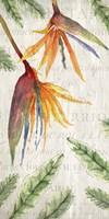 Tropical Blooms 1 Fine Art Print